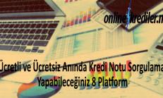 Ücretli-Ücretsiz Anında Kredi Notu Sorgulama 8 Platform