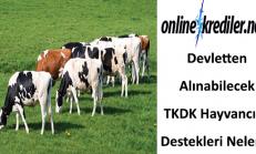Devletten Alınabilecek TKDK Hayvancılık Destekleri Nelerdir