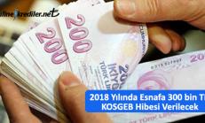 2019 Yılında Esnafa 300 bin TL KOSGEB Hibesi Verilecek