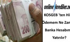 KOSGEB ten Hibe Ödemem Ne Zaman Banka Hesabıma Yatırılır