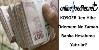 KOSGEB 'ten Hibe Ödemem Ne Zaman Banka Hesabıma Yatırılır?