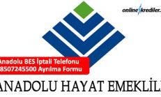 Anadolu Hayat BES İptali Telefonu 08507245500 Ayrılma Formu