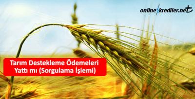 Tarım Destekleme Ödemeleri Yattı mı (Sorgulama İşlemi)