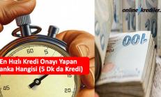 En Hızlı Kredi Onayı Yapan Banka Hangisi (5 Dk da Kredi)