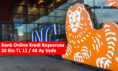 ING Bank Online Kredi Başvurusu 30 Bin TL 12 / 36 Ay Vade
