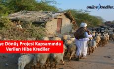 Köye Dönüş Projesi Kapsamında Verilen Hibe Krediler