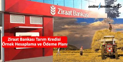 Ziraat Bankası Tarım Kredisi Örnek Hesaplama ve Ödeme Planı