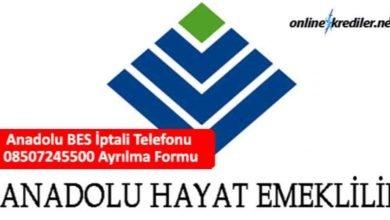 Photo of Anadolu Hayat BES İptali Telefonu 08507245500 Ayrılma Formu