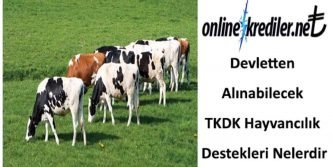 TKDK hibe kredi desteği
